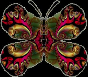 fractale-papillon-petit